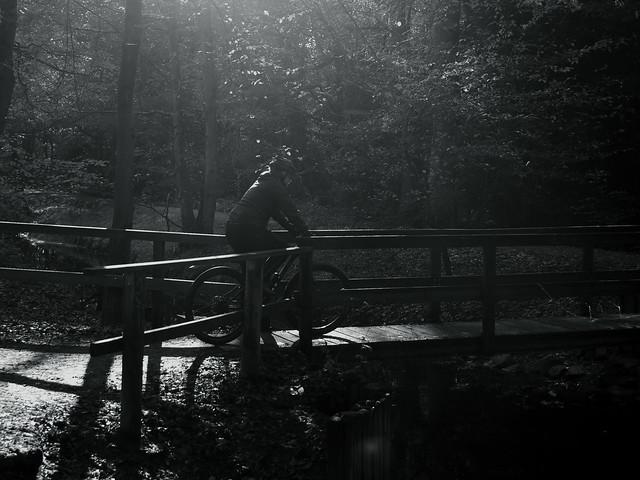 late autumn light@@Sechs-Seen-Platte, Duisburg