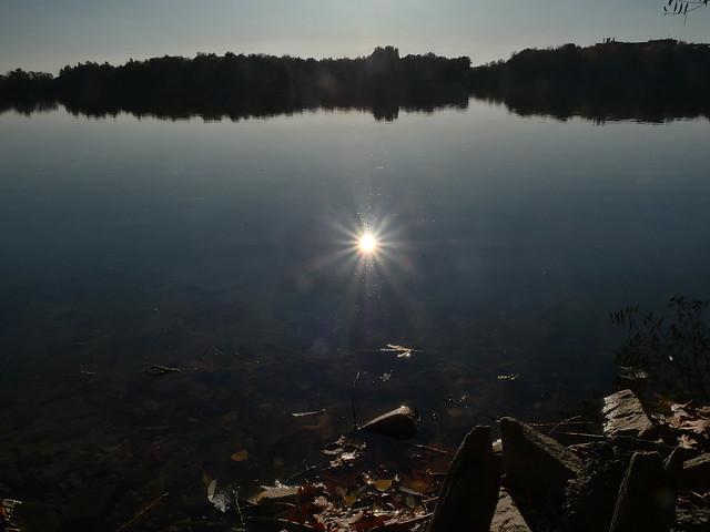 autumn sun light on water@Sechs-Seen-Platte, Duisburg