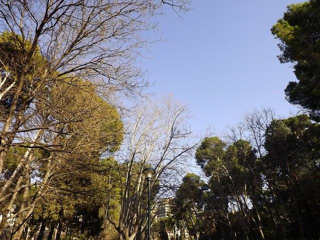 En Parque Abelardo Sánchez (Albacete)