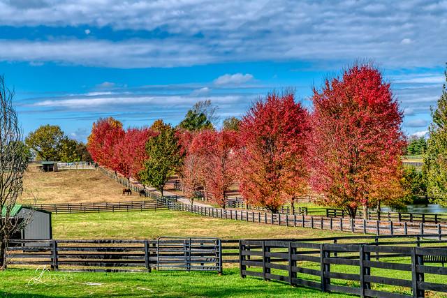 Fall in Kentucky