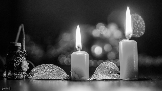 Candles - 7697
