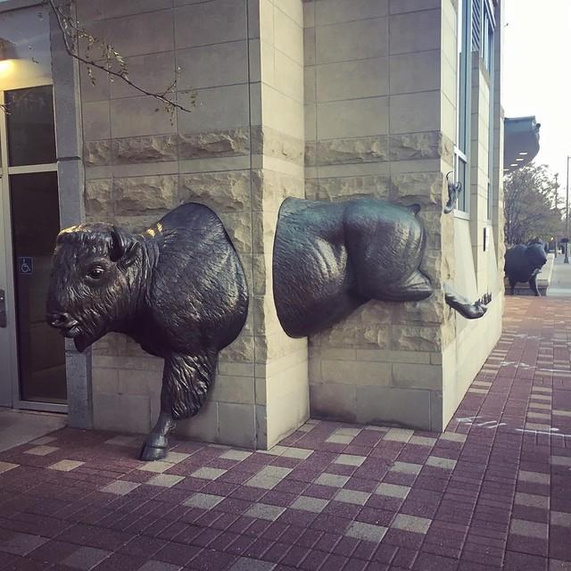 Bronze Buffalo. Omaha, NE.
