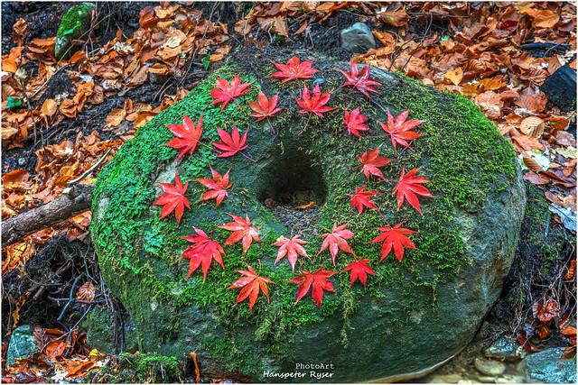 Steinkreis mit Blätter