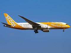 Scoot | Boeing 787-8 Dreamliner | 9V-OFK