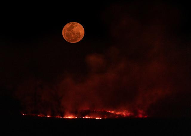 Fires-Mozambique