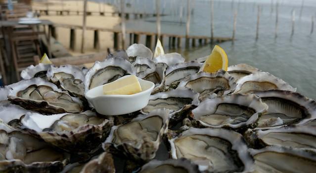 Délices du Bassin à la cabane 57 chez Sylvie Latrille, Piraillan, presqu'île du Cap Ferret, Bassin d'Arcachon, Gironde, Aquitaine, France.