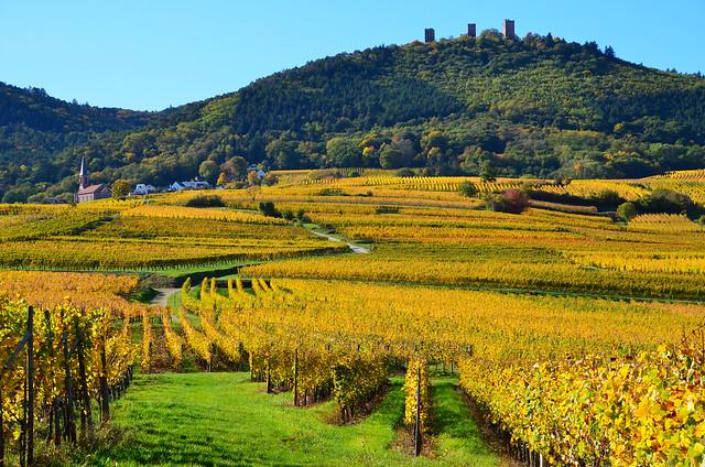 Husseren-les-Châteaux & les Trois Châteaux d'Eguisheim