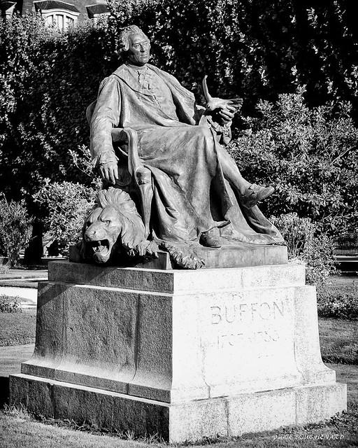Conte de Buffon