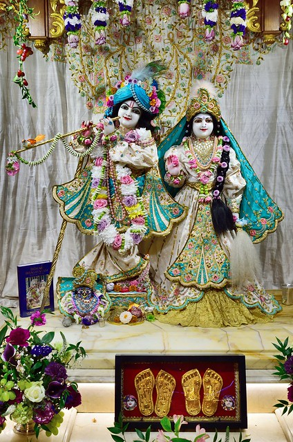 Daily sharing Ashtavakra Gita in English & Hindi Pt 17.19