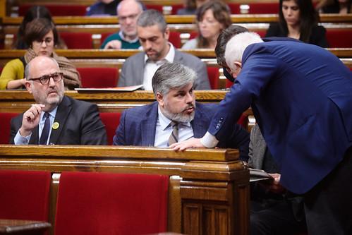 Ple del Parlament (12-11-2019)