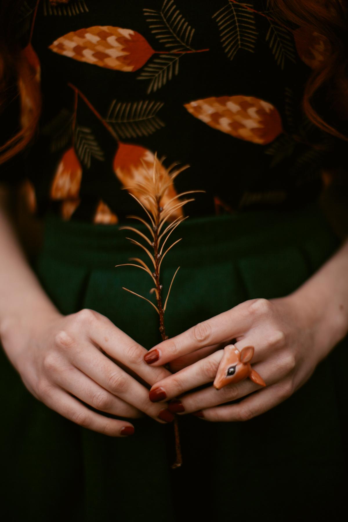 pinecones-18