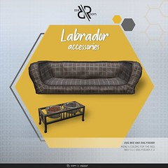 Labrador Accessories Pack