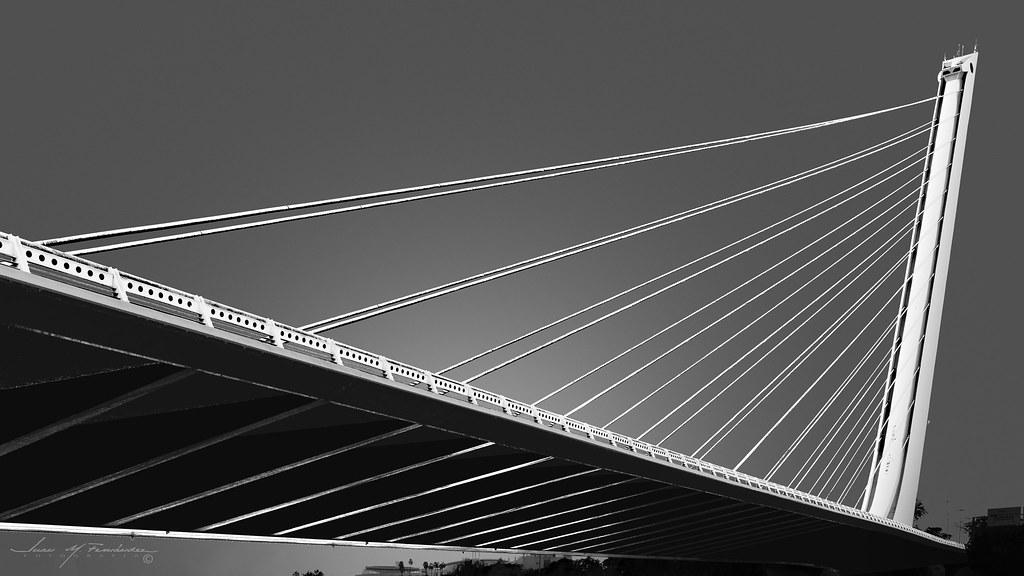 Alamillo bridge en Urbana y Arquitectura49056170158_10eb4f2ed8_b