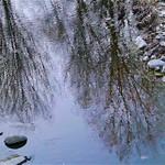 Silver Creek Freezing