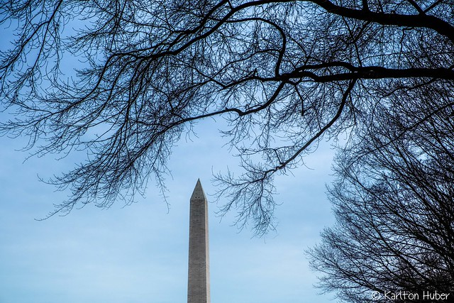 Washington Monument From The National Mall