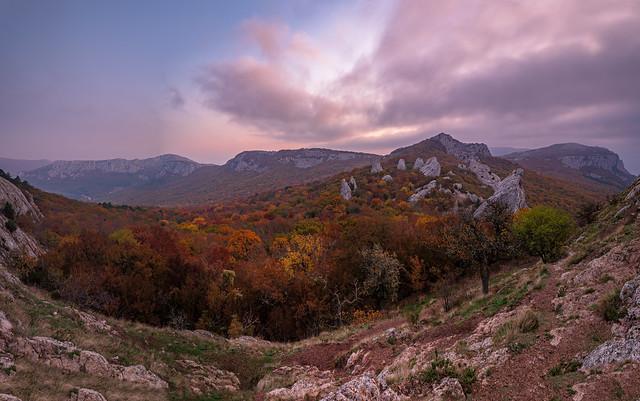 Autumn Tyshlar