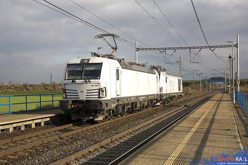 193 365 . DB Cargo + 248 001 . SIEMENS . 44390 . Lukavec . 06.11.19.