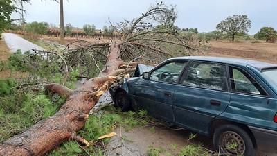 danni maltempo e volontari protezione civile