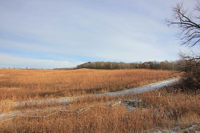 Korth's Meadow . . .