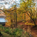 """<p><a href=""""https://www.flickr.com/people/tim-allen/"""">Timallen</a> posted a photo:</p>  <p><a href=""""https://www.flickr.com/photos/tim-allen/49056743957/"""" title=""""Autumn""""><img src=""""https://live.staticflickr.com/65535/49056743957_c0d76d9e27_m.jpg"""" width=""""240"""" height=""""160"""" alt=""""Autumn"""" /></a></p>"""
