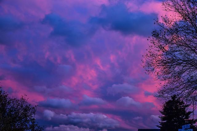 OMFD November Sky
