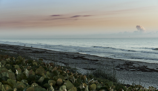 Pastel Tones on the Shore