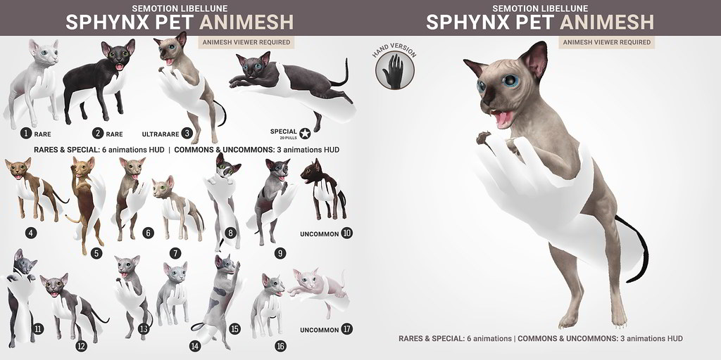 SEmotion Libellune Sphynx Cat Pet Animesh
