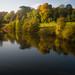 Autumn scenes, Severn, Shrewsbury