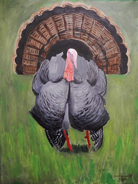 Turkey - Acrylic Painting Done by STEVEN CHATEAUNEUF (2019)