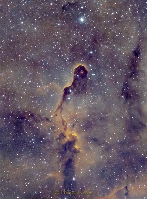 The Elephant's trunk nebula (1rst try)