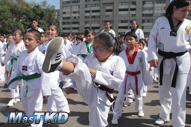 50 AÑOS TAEKWONDO EN MÉXICO 9 DE NOVIEMBRE 2019 (77 of 190)