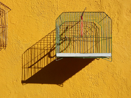 Yellow wall with a cage and its shadow in Puebla, Mexico