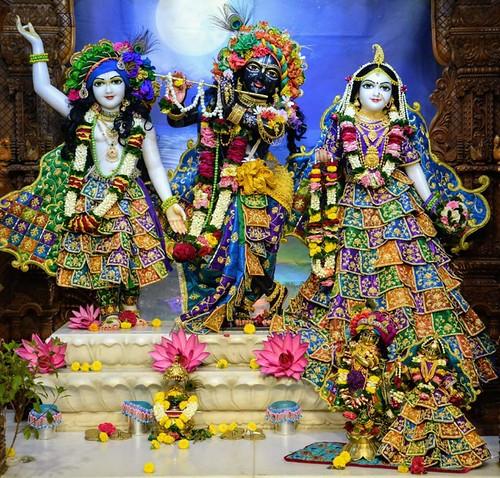 ISKCON GEV Wada Deity Darshan 12 Nov 2019