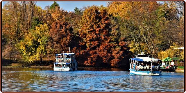 Mid-November sunny days on Herastrau lake, Bucharest (1)