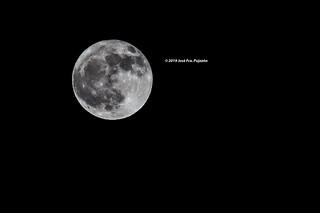 Luna llena del 12-11-2019