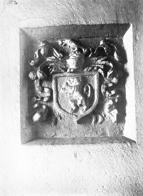 Deep seated crest with personality?