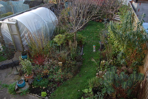 Looking Down on the Back Garden - November 2019
