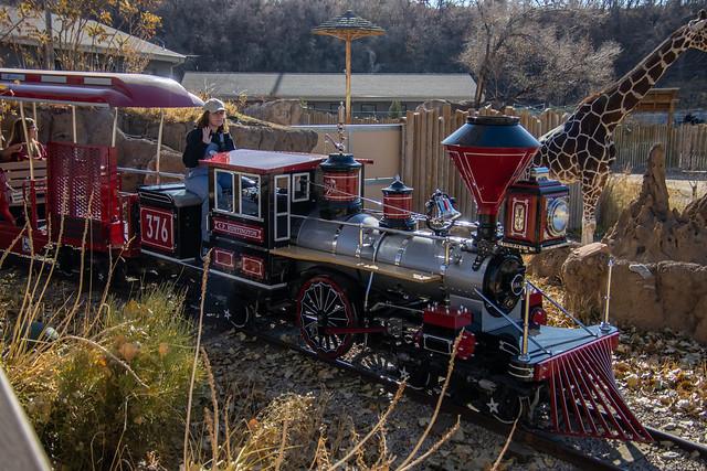 Train Ride at a Zoo IMG_2976