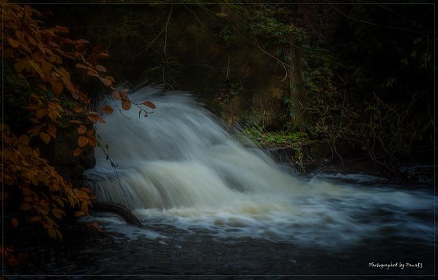 Herbstfarben - Este