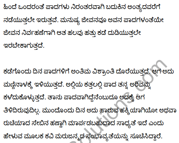 To the Foot from its Child Summary in Kannada 4
