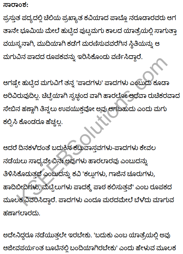 To the Foot from its Child Summary in Kannada 2