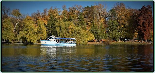 Mid-November sunny days on Herastrau lake, Bucharest (4)