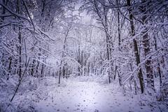 20191113 Pen Glen Snow! - Al Susinskas-3
