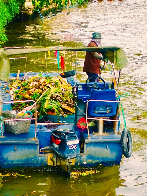 Clearing the Chao Phraya river of water hyacinths