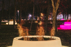 Benches | Kaunas