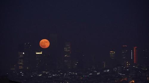 A foggy Istanbul evening and full moon. Turkey 🇹🇷