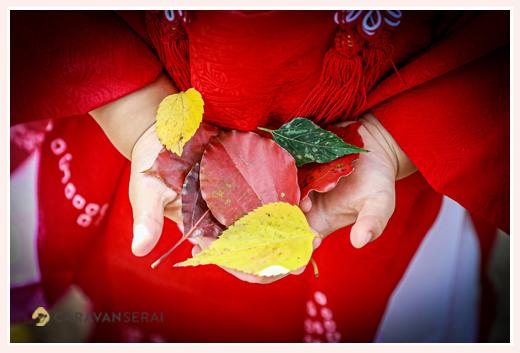 秋の七五三 色づいた葉っぱを手に持って