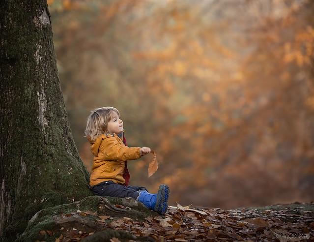 Magical autumn!