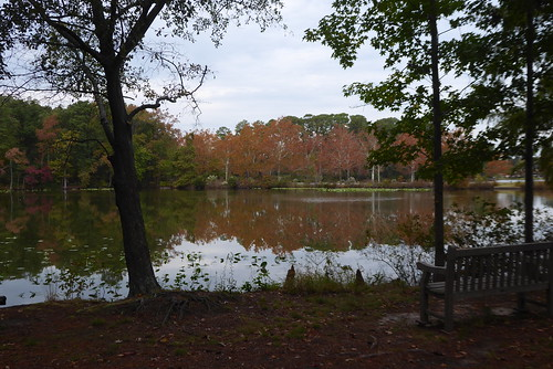 Norfolk Botanical Garden October 2019