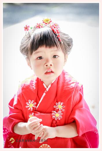七五三の衣装 3歳の女の子 赤い着物・被布・髪飾り
